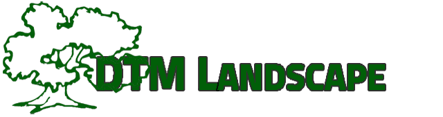 DTM Lanscape
